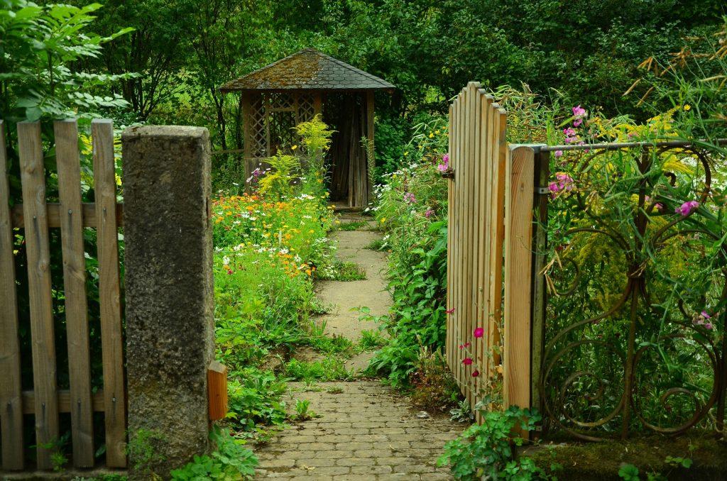 garden-910946_1920